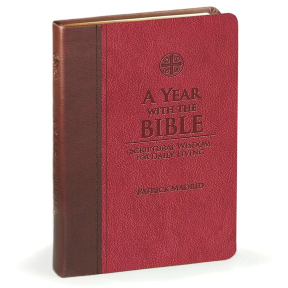 A Year with the Bible (imitation leather)