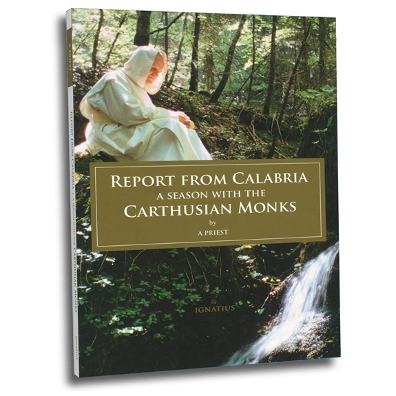Report from Calabria (paperback)