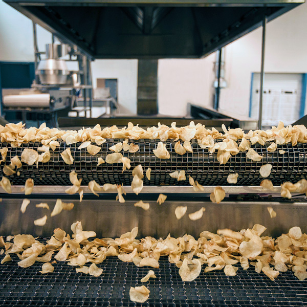 potato chips on a factory conveyor belt