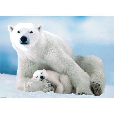 Polar Bear & Baby 1000 Piece Jigsaw Puzzle