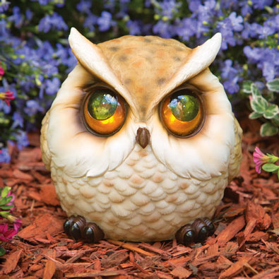 Whimsical Plump Owl