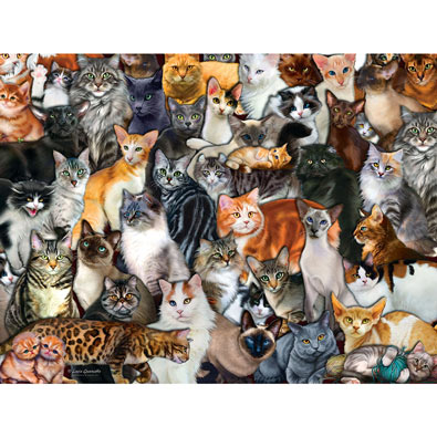 Cat Collage 300 Large Piece Pet Jigsaw Puzzle