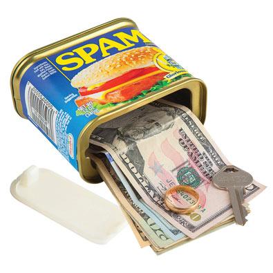 Spam® Secret Safe