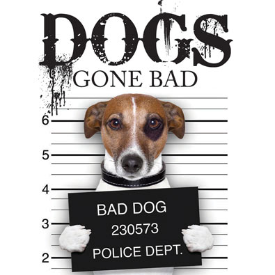 Pets Gone Bad Book - Dogs
