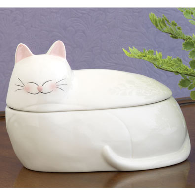 Ceramic Cat Box