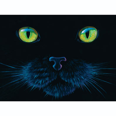 Black Cat Face 1000 Piece Jigsaw Puzzle