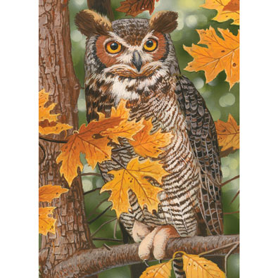 Autumn Owl 1000 Piece Jigsaw Puzzle