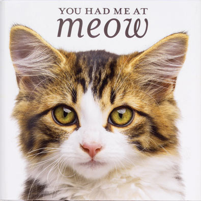 You Had Me at Meow Book