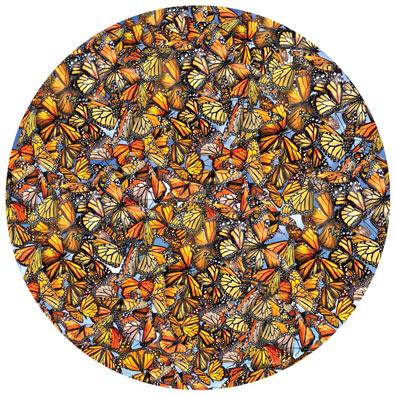Monarch Frenzy 1000 Piece Round Jigsaw Puzzle