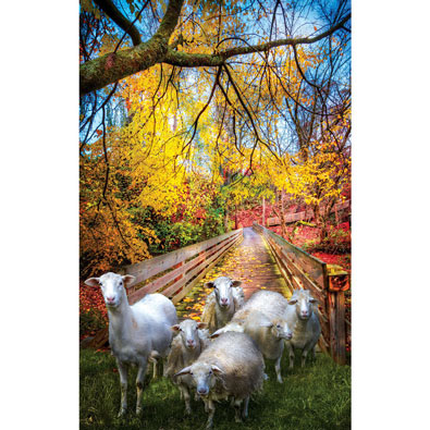 Sheep Crossing 550 Piece Jigsaw Puzzle