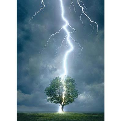 Lightning Striking Tree 1000 Piece Jigsaw Puzzle