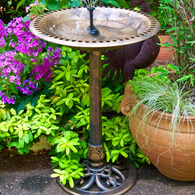 Birdbaths and Water Aids