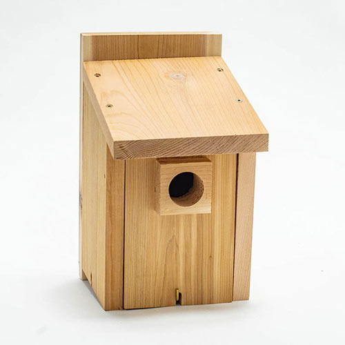 Basic Bluebird House