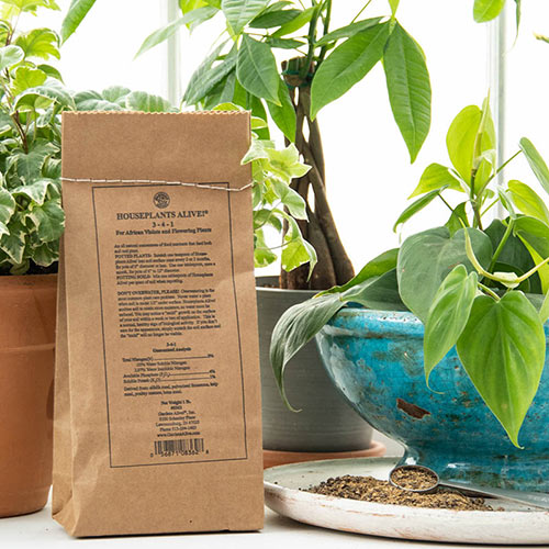 House Plants Alive!® For Flowers