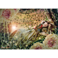 The Briar Rose 300 Large Piece Jigsaw Puzzle
