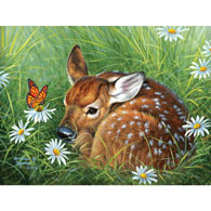 Natural Tranquility 300 Large Piece Jigsaw Puzzle