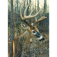White-Tailed Deer 1000 Piece Jigsaw Puzzle