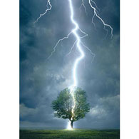 Lightning Striking Tree 1000 Piece Jigsaw Puzzle