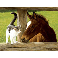 Whiskery Hello 500 Piece Jigsaw Puzzle