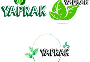 Creación de logos personales o empresariales