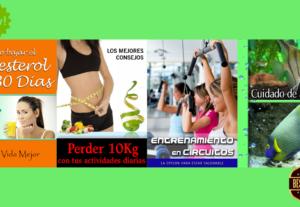 Te daré 10 ebooks y portada con licencia PLR en Español (Nicho varios)