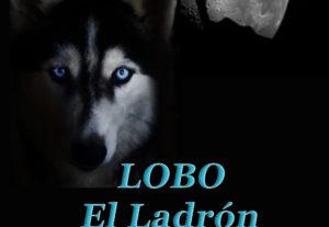 "Diseño de portada de libro ""Ebook"""