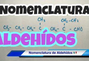 Presentación de Aldehídos de Química Orgánica