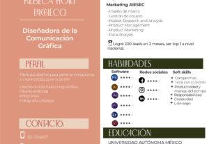 Diseño tu Curriculum personalizado asesoría gratis