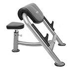 Cybex Curl Bench
