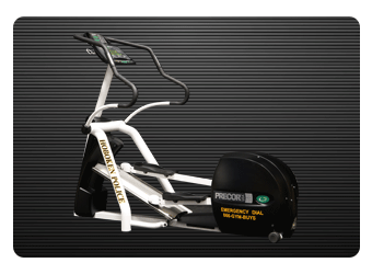 Police Cruiser Elliptical / Black on White Elliptical