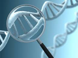 A Look at the Headlines: Genetic Testing and Drug Costs