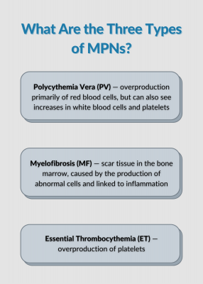 What Are the Three Types of MPNs?