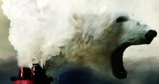 Polar bear / air pollution