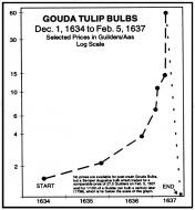 Tulip-Bubble
