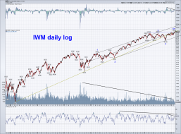 IWM daily log.png