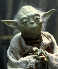 yoda-is-disciplined.png