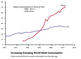 meatconsumption.png