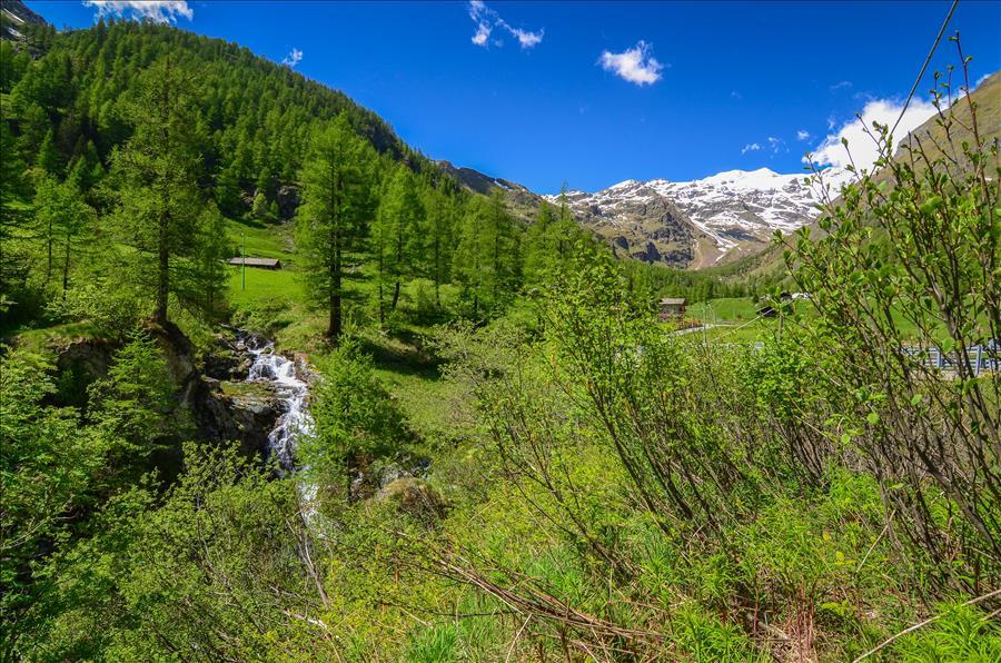 Ferienwohnung 1bdr with views of the Alps (1917508), Gressoney la Trinite', , Aostatal, Italien, Bild 18