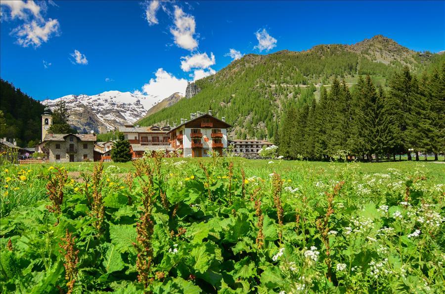 Ferienwohnung 1bdr with views of the Alps (1917508), Gressoney la Trinite', , Aostatal, Italien, Bild 16