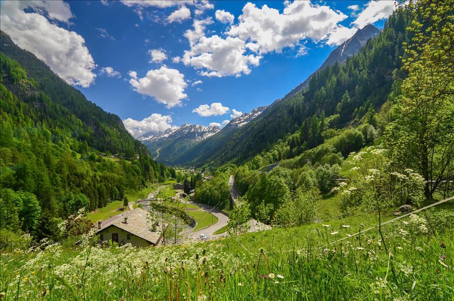 Ferienwohnung 1bdr with views of the Alps (1917508), Gressoney la Trinite', , Aostatal, Italien, Bild 15