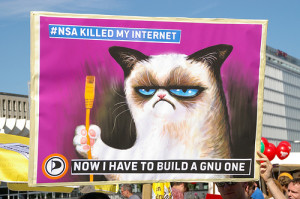 Using Memes for Marketing - Grumpy Cat