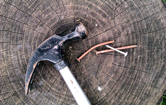 hammer and nails on top of a tree stump