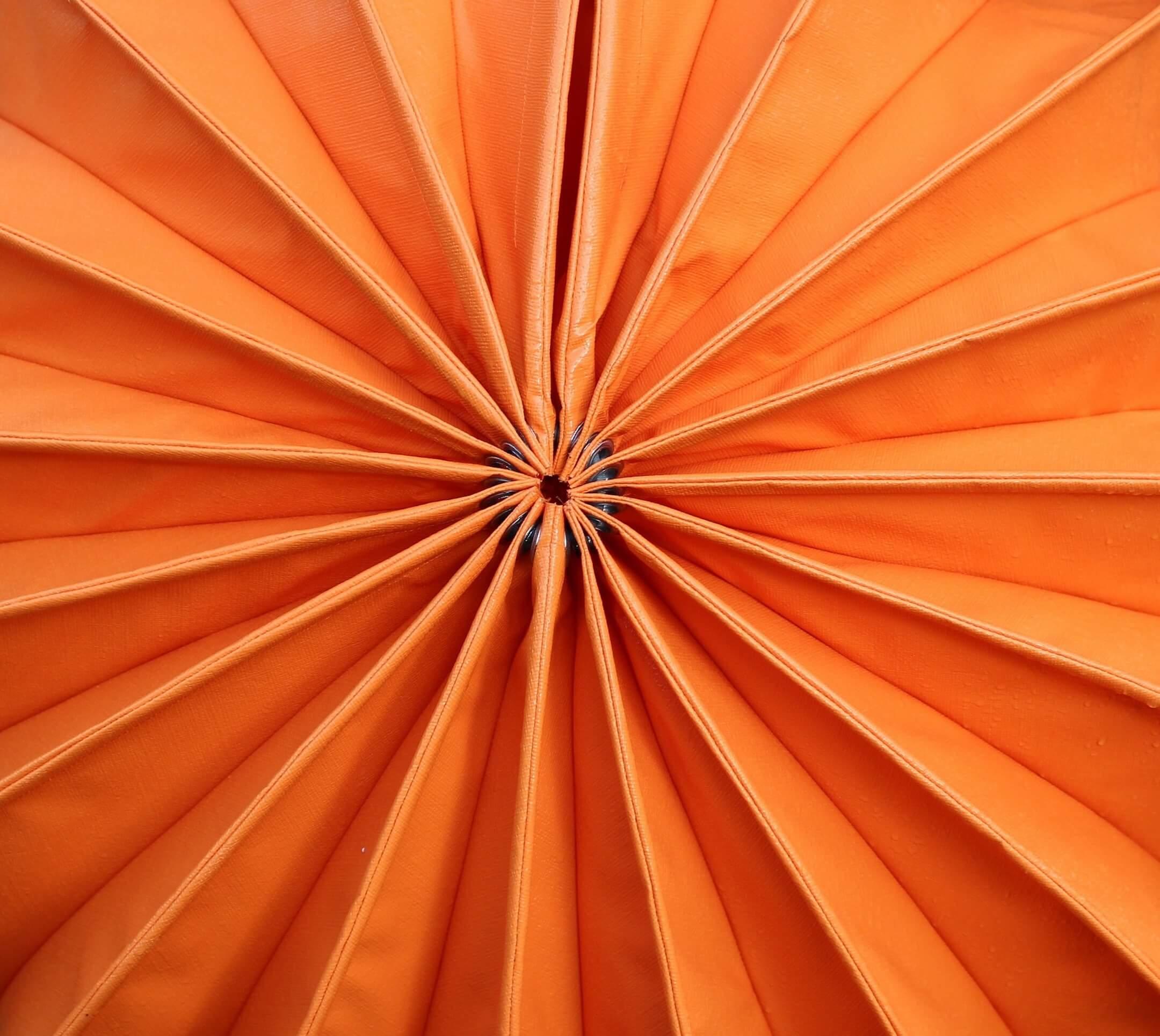 orange chapter 1