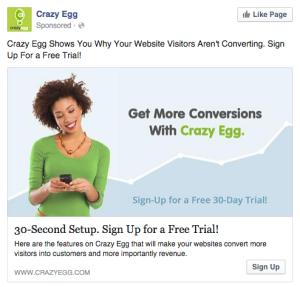 Crazy Egg instant gratification