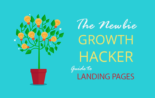 newbie growth hacker guide landing pages
