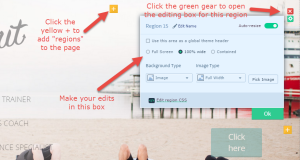 options when editing a region of your web page