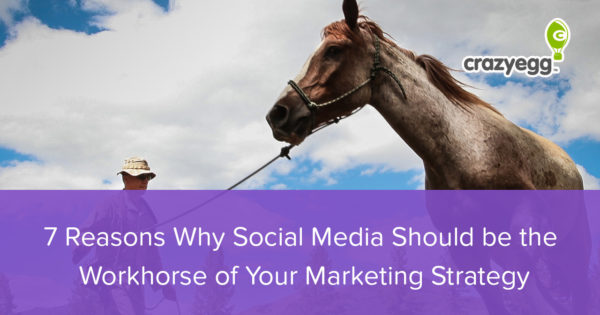 social media workhorse