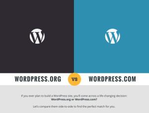 wordpress vs wordpress infographic