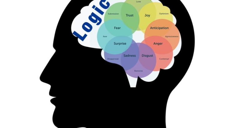 logic brain