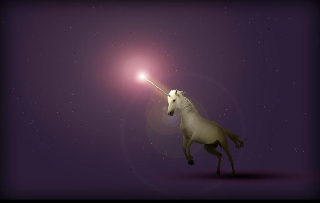 silicon valley unicorns